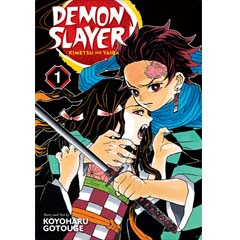 Acheter Demon Slayer: Kimetsu no Yaiba sur Amazon