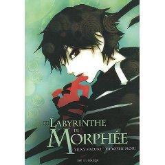 Acheter Le Labyrinthe de Morphée sur Amazon